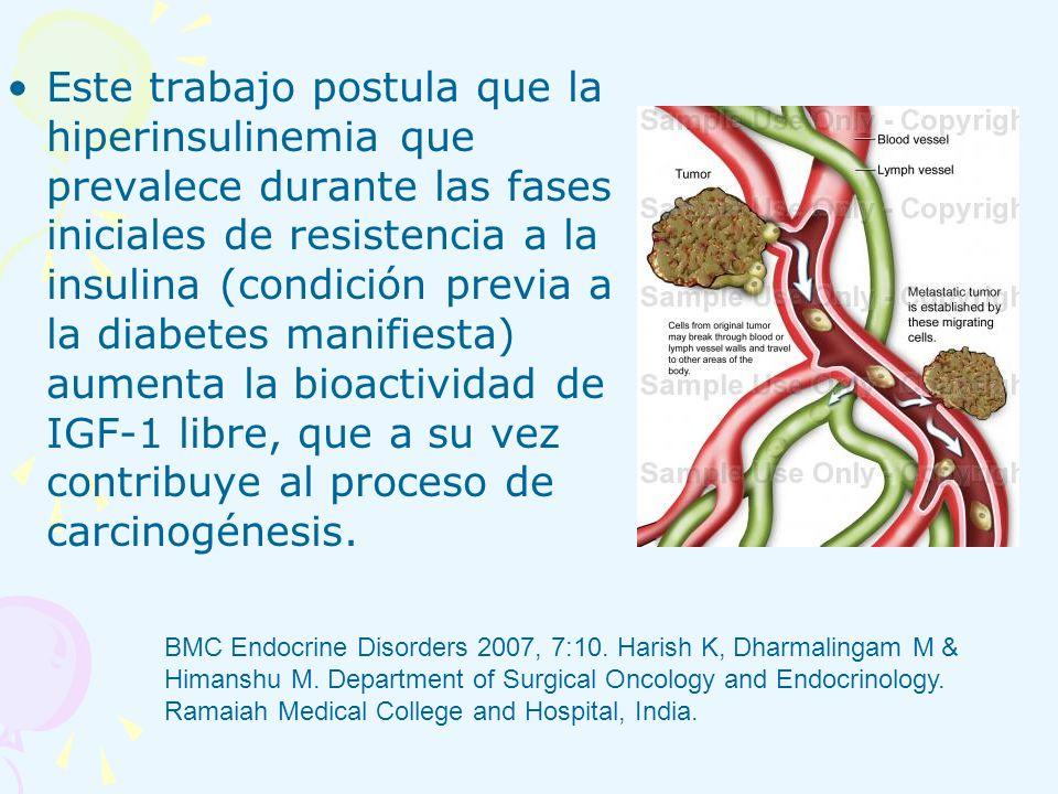 Este trabajo postula que la hiperinsulinemia que prevalece durante las fases iniciales de resistencia a la insulina (condición previa a la diabetes ma