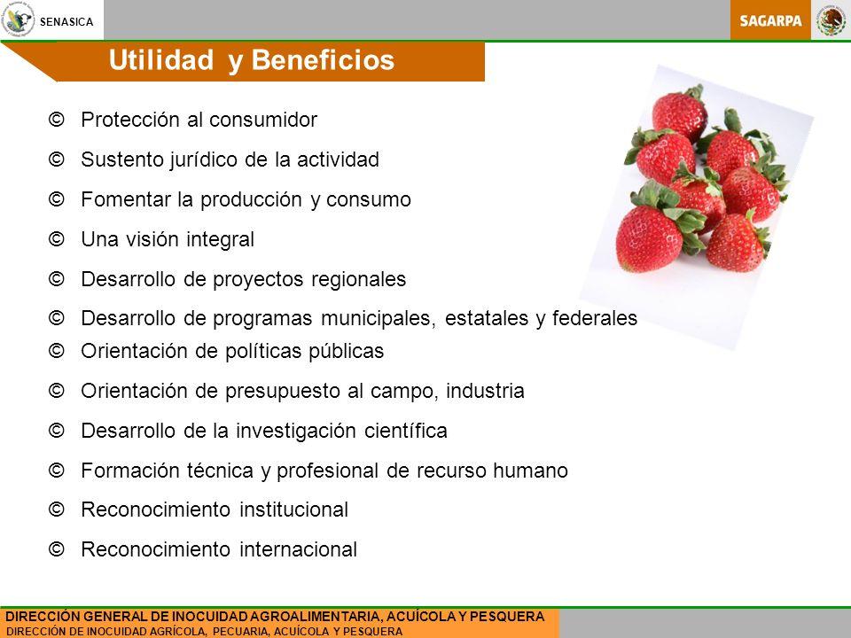 SENASICA DIRECCIÓN DE INOCUIDAD AGRÍCOLA, PECUARIA, ACUÍCOLA Y PESQUERA DIRECCIÓN GENERAL DE INOCUIDAD AGROALIMENTARIA, ACUÍCOLA Y PESQUERA ©Protección al consumidor ©Sustento jurídico de la actividad ©Fomentar la producción y consumo ©Una visión integral ©Desarrollo de proyectos regionales ©Desarrollo de programas municipales, estatales y federales ©Orientación de políticas públicas ©Orientación de presupuesto al campo, industria ©Desarrollo de la investigación científica ©Formación técnica y profesional de recurso humano ©Reconocimiento institucional ©Reconocimiento internacional Utilidad y Beneficios