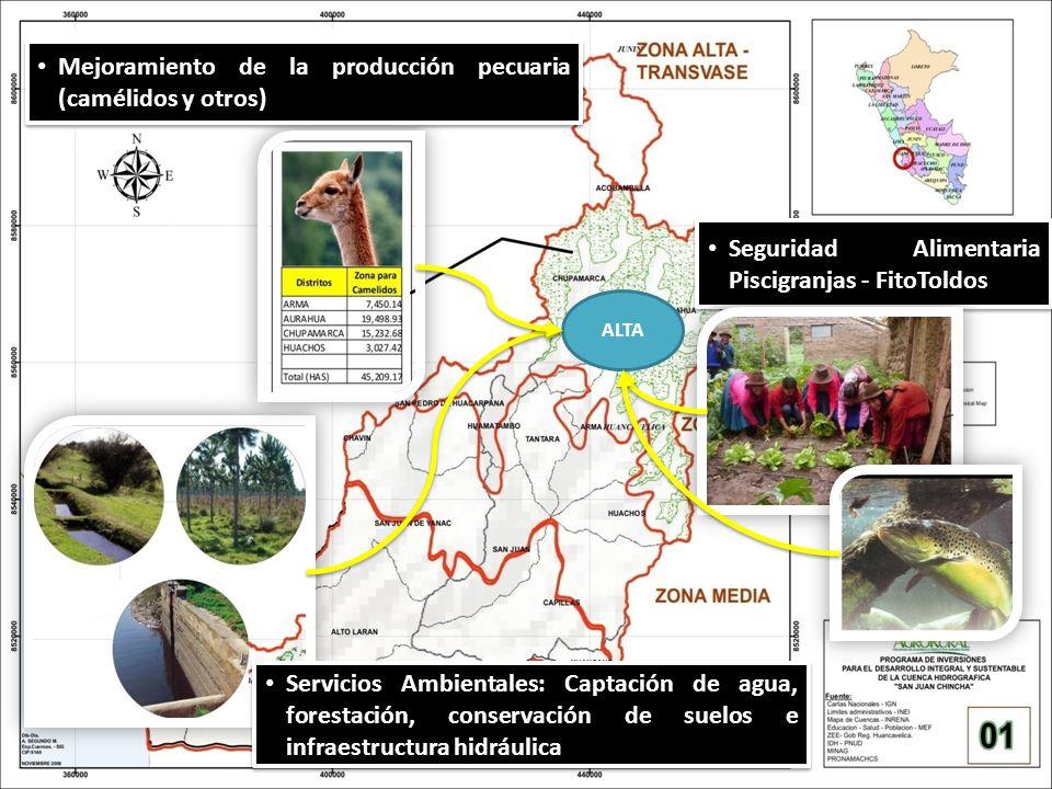ALTA Servicios Ambientales: Captación de agua, forestación, conservación de suelos e infraestructura hidráulica Seguridad Alimentaria Piscigranjas - F