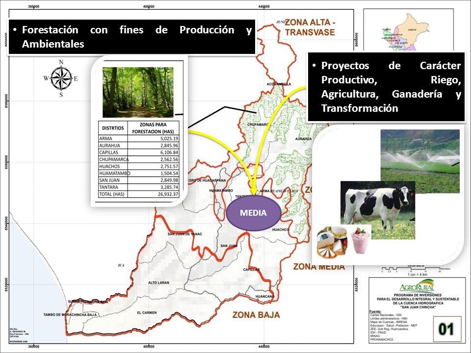 MEDIA Forestación con fines de Producción y Ambientales Proyectos de Carácter Productivo, Riego, Agricultura, Ganadería y Transformación
