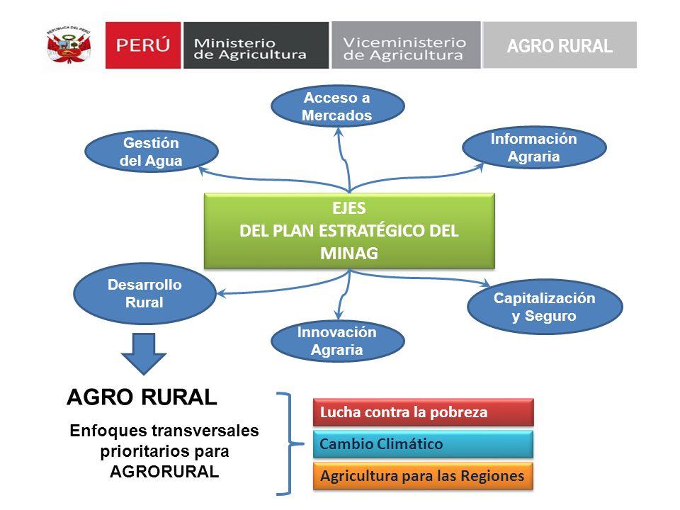EJES DEL PLAN ESTRATÉGICO DEL MINAG EJES DEL PLAN ESTRATÉGICO DEL MINAG Acceso a Mercados Gestión del Agua Información Agraria Desarrollo Rural Innova