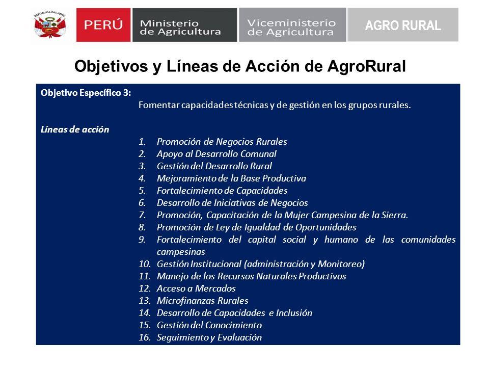 Objetivos y Líneas de Acción de AgroRural AGRO RURAL Objetivo Específico 3: Fomentar capacidades técnicas y de gestión en los grupos rurales. Líneas d