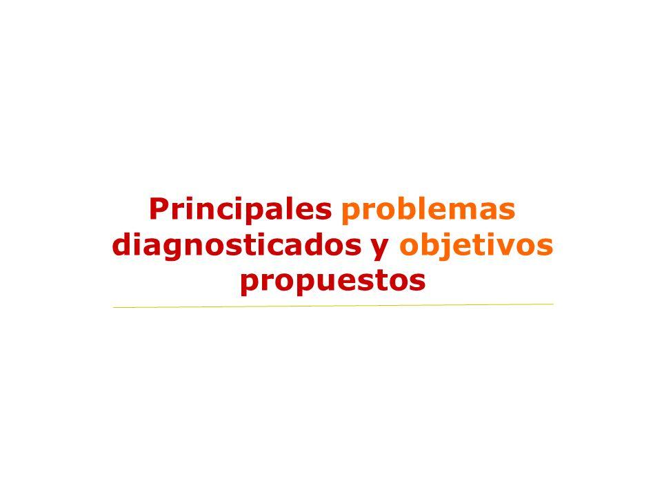 Principales problemas diagnosticados y objetivos propuestos