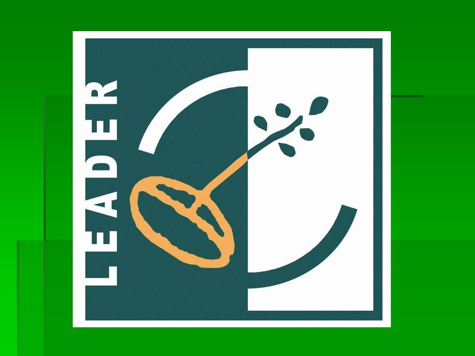 COMPATIBILIDAD DE LAS AYUDAS Las ayudas del Eje LEADER están cofinanciadas por el Fondo Europeo Agrícola de Desarrollo Rural (FEADER) y por tanto, serán incompatibles con las ayudas cubiertas por cualquier otro instrumento financiero comunitario, por otro eje del FEADER o por las organizaciones comunes de mercado.