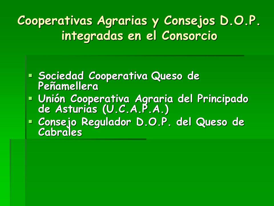 Grupos políticos y Sindicatos integrados en el Consorcio Grupo Socialista Grupo Socialista Grupo Popular Grupo Popular Unión Comarcal de U.G.T.