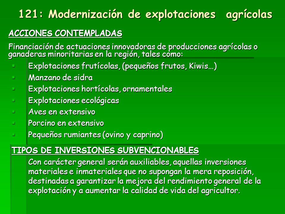 Eje 1: Competitividad Medida 121: Modernización de explotaciones agrícolas (proyectos productivos) PERSONAS O ENTIDADES BENEFICIARIAS Agricultores/as profesionales.