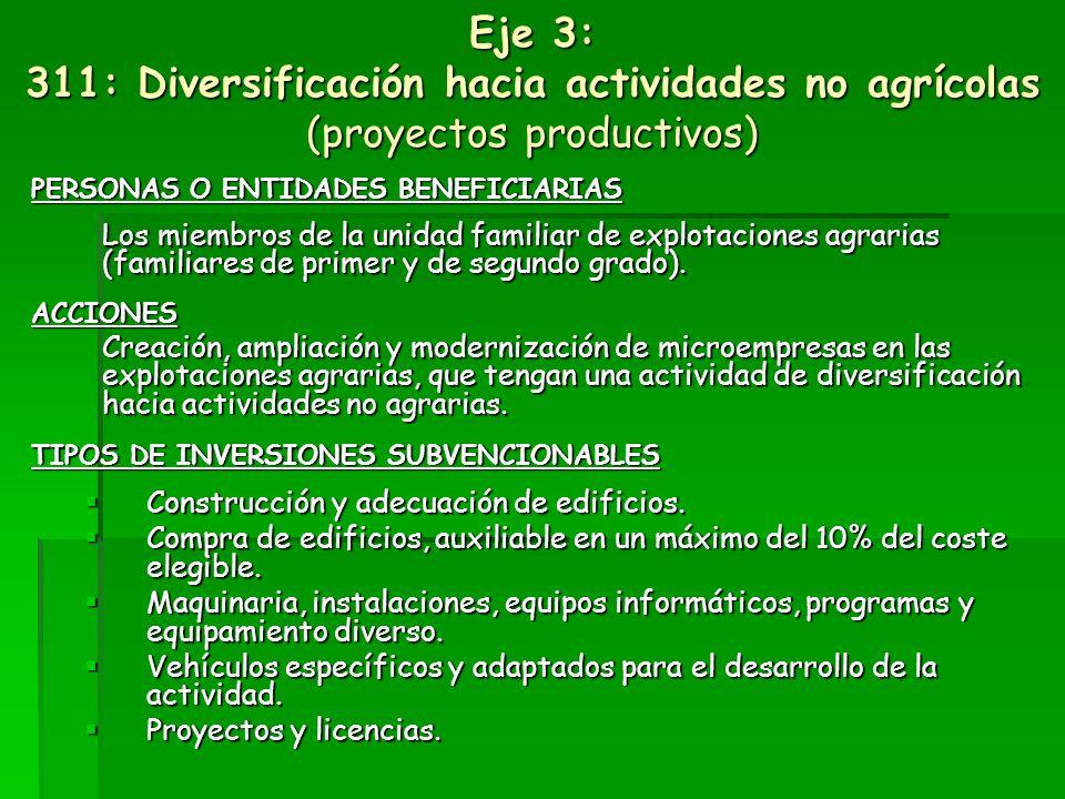 Eje 3: Calidad de vida en las zonas rurales y diversificación de la economía rural Medidas de Diversificación de la economía rural: 311 Diversificació