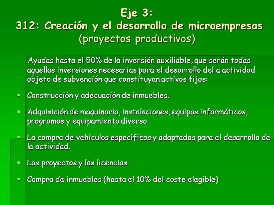Eje 3: 311: Diversificación hacia actividades no agrícolas (proyectos productivos) PERSONAS O ENTIDADES BENEFICIARIAS Los miembros de la unidad famili