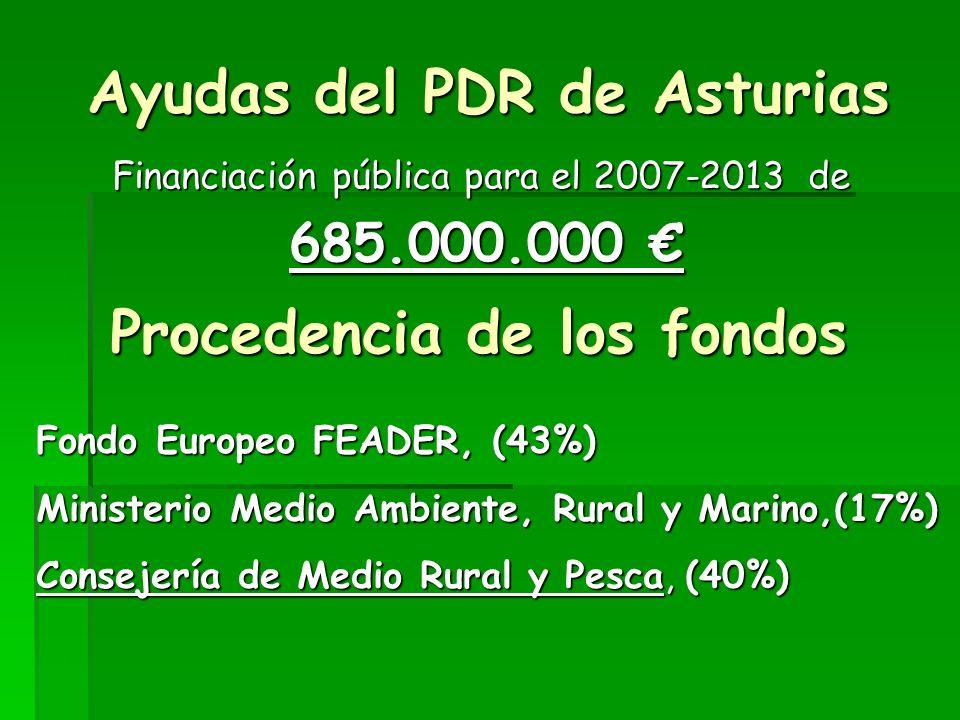 Programa de Desarrollo Rural de Asturias 2007-2013 (PDR) Consejería de Medio Rural y Pesca Fondo Europeo Agrícola de Desarrollo Rural FEADER Reglamento (CE) 1698/2005 Ayuda al Desarrollo Rural