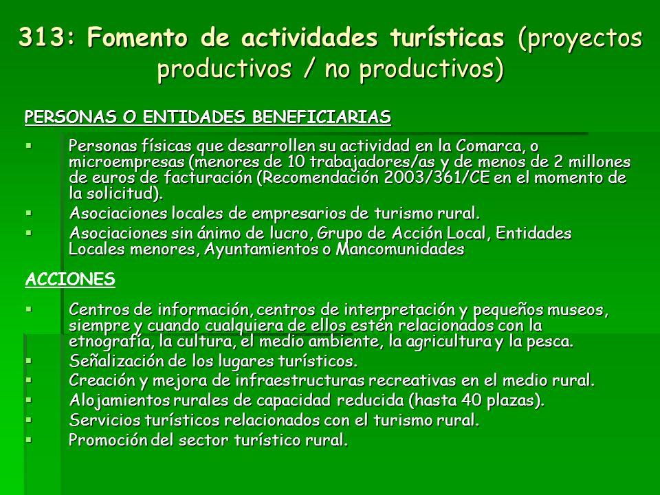 Eje 3: Medida 313: Fomento de las actividades turísticas (proyectos productivos / no productivos) Las ayudas están encaminadas a impulsar nuevas actividades y pequeñas infraestructuras turísticas, así como a la modernización y a la promoción del sector turístico como principal motor económico de la comarca.