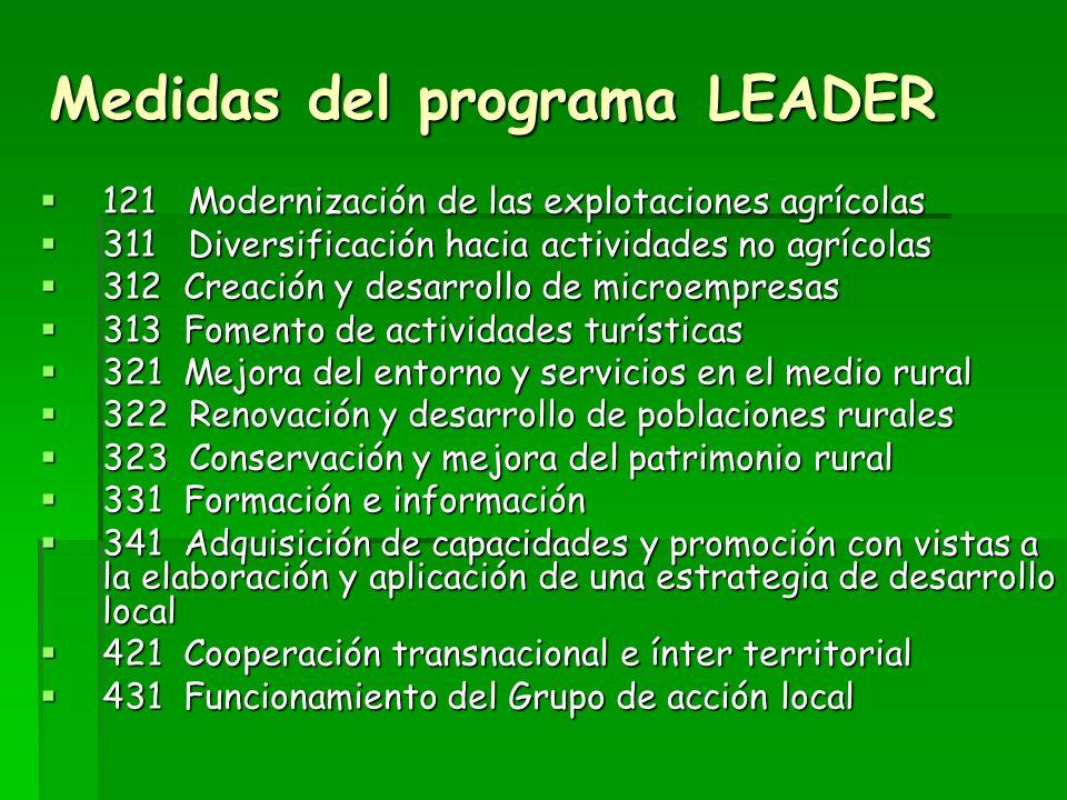 Programa LEADER 2007-2013 Se asignan a los 11 Grupos de Acción Local seleccionados para la ejecución de los programas estratégicos comarcales. Se asig