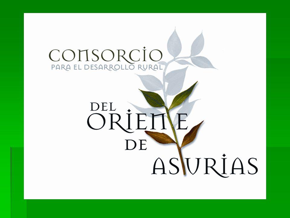 Programa LEADER del Oriente de Asturias 2007-2013 El grupo de acción local Consorcio para el Desarrollo Rural del Oriente de Asturias gestionará ayuda