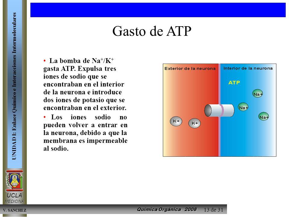 Química Orgánica 2008 UCLAMEDICINA UNIDAD I: Enlace Químico e Interacciones Intermoleculares V. SANCHEZ 13 de 31 La bomba de Na + /K + gasta ATP. Expu