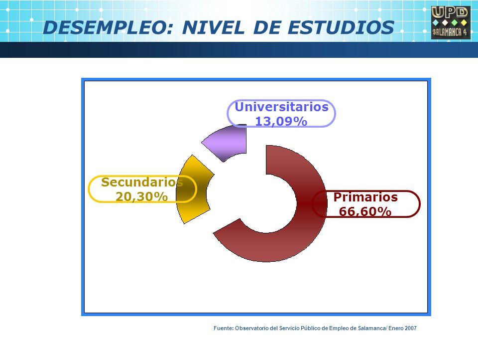 DESEMPLEO: NIVEL DE ESTUDIOS Universitarios 13,09% Primarios 66,60% Secundarios 20,30% Fuente: Observatorio del Servicio Público de Empleo de Salamanca/ Enero 2007