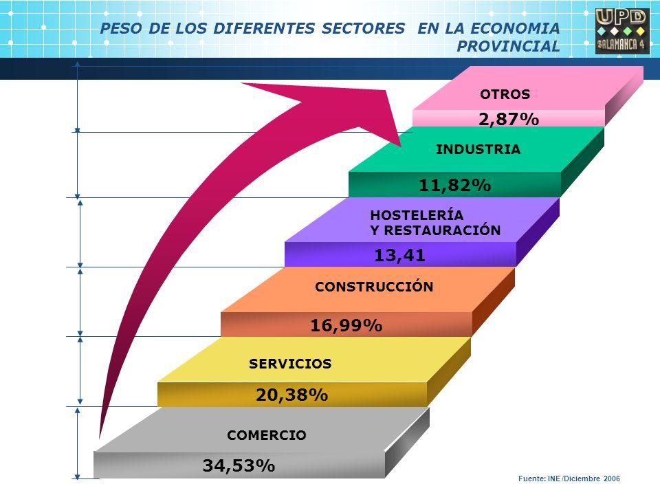 PESO DE LOS DIFERENTES SECTORES EN LA ECONOMIA PROVINCIAL 11,82% 13,41 16,99% 20,38% INDUSTRIA CONSTRUCCIÓN SERVICIOS 34,53% 2,87% COMERCIO OTROS HOSTELERÍA Y RESTAURACIÓN Fuente: INE /Diciembre 2006