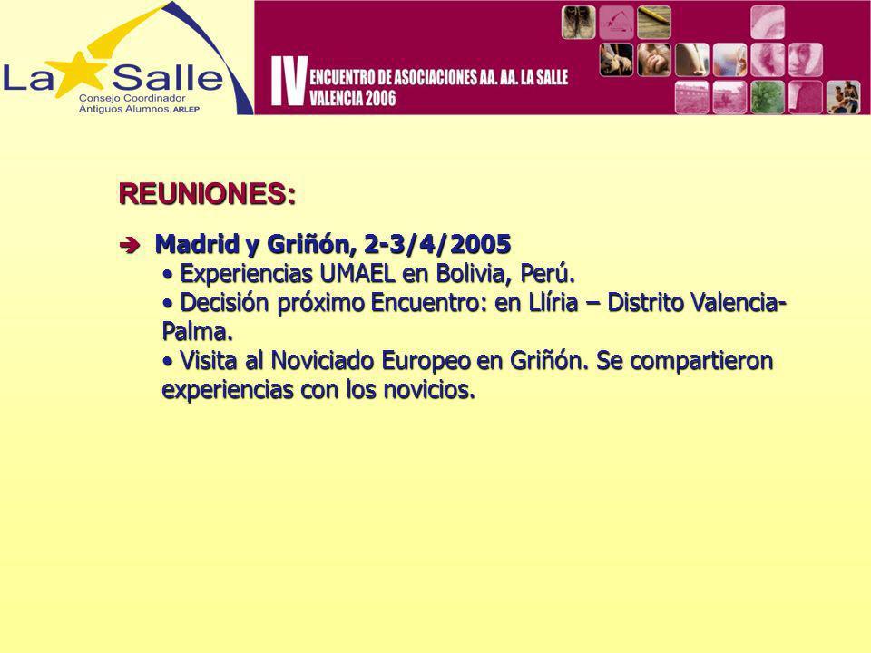 REUNIONES: Madrid y Griñón, 2-3/4/2005 Madrid y Griñón, 2-3/4/2005 Experiencias UMAEL en Bolivia, Perú. Experiencias UMAEL en Bolivia, Perú. Decisión