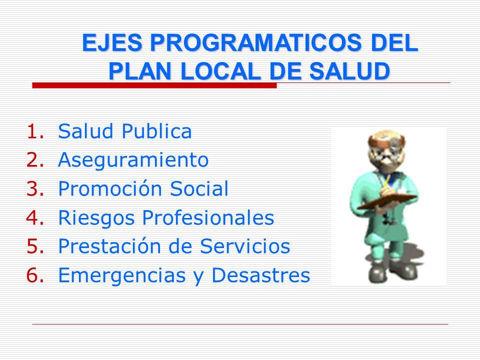 1.Salud Publica 2.Aseguramiento 3.Promoción Social 4.Riesgos Profesionales 5.Prestación de Servicios 6.Emergencias y Desastres EJES PROGRAMATICOS DEL