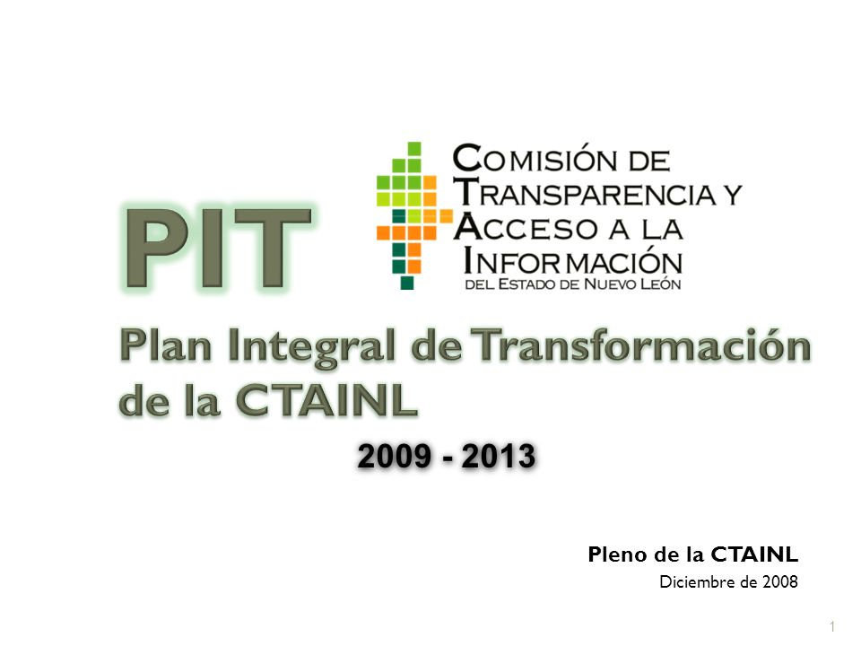 Pleno de la CTAINL Diciembre de 2008 2009 - 2013 1