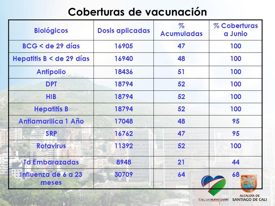 Coberturas de vacunación BiológicosDosis aplicadas % Acumuladas % Coberturas a Junio BCG < de 29 días1690547100 Hepatitis B < de 29 días1694048100 Antipolio1843651100 DPT1879452100 HIB1879452100 Hepatitis B1879452100 Antiamarilica 1 Año170484895 SRP167624795 Rotavirus1139252100 Td Embarazadas89482144 Influenza de 6 a 23 meses 307096468