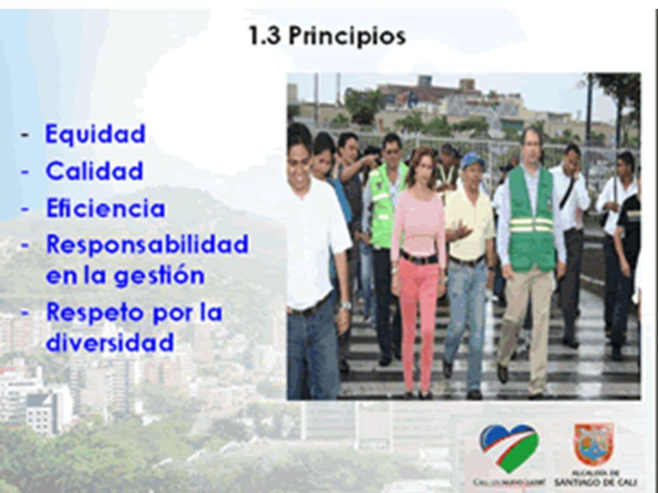 - Sistemas sin riesgo: 7 (32%): - Cabecera Pance, El Banqueo, Buitrera, Pilas Cabuyal, Cabecera Castilla, Golondrinas, Cabecera La Elvira.