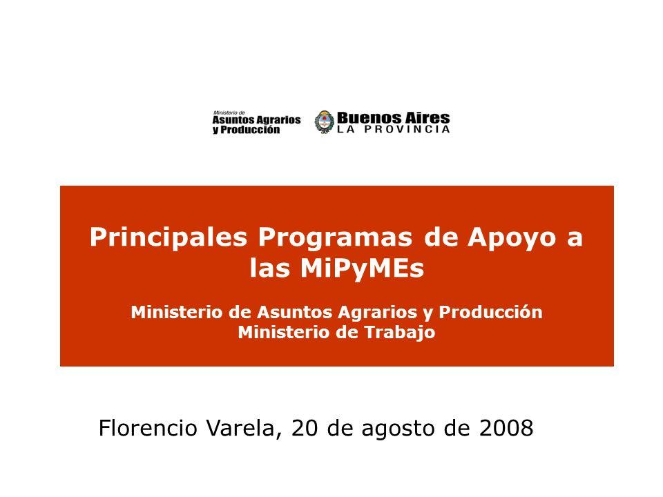 Principales Programas de Apoyo a las MiPyMEs Ministerio de Asuntos Agrarios y Producción Ministerio de Trabajo Florencio Varela, 20 de agosto de 2008