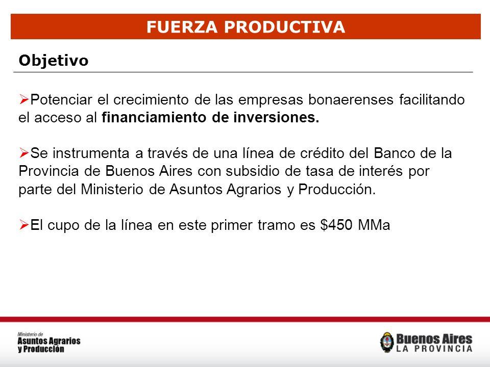 FUERZA PRODUCTIVA Objetivo Potenciar el crecimiento de las empresas bonaerenses facilitando el acceso al financiamiento de inversiones. Se instrumenta