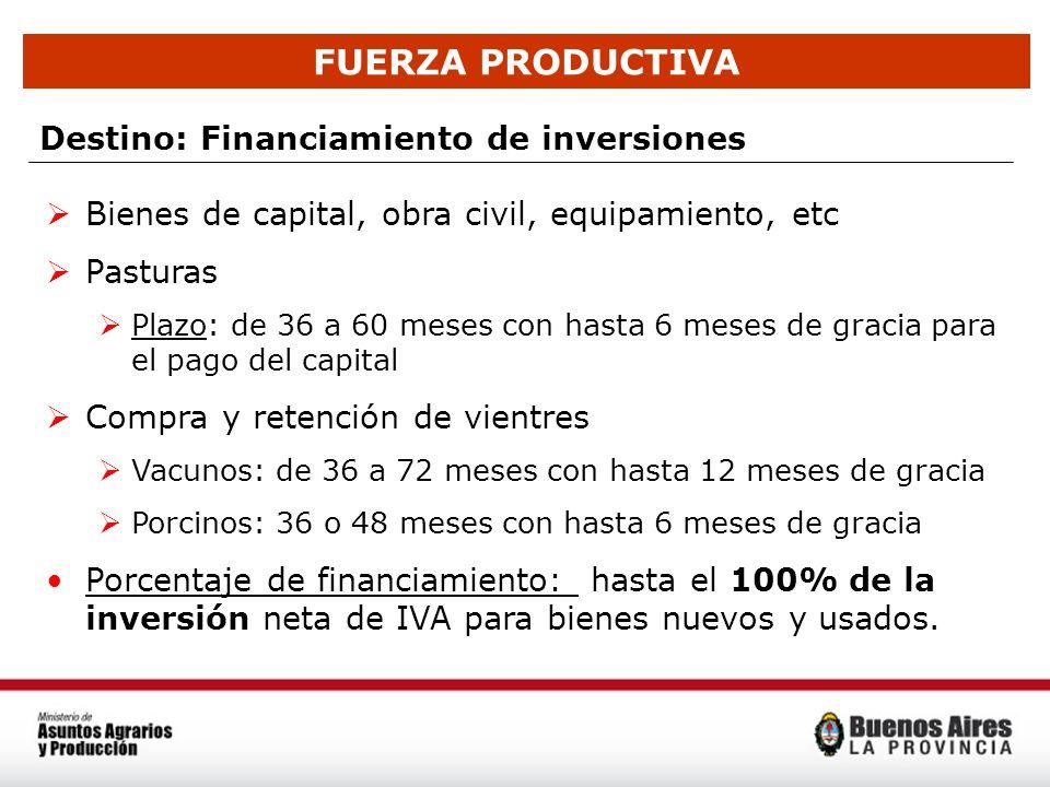 FUERZA PRODUCTIVA Destino: Financiamiento de inversiones Bienes de capital, obra civil, equipamiento, etc Pasturas Plazo: de 36 a 60 meses con hasta 6