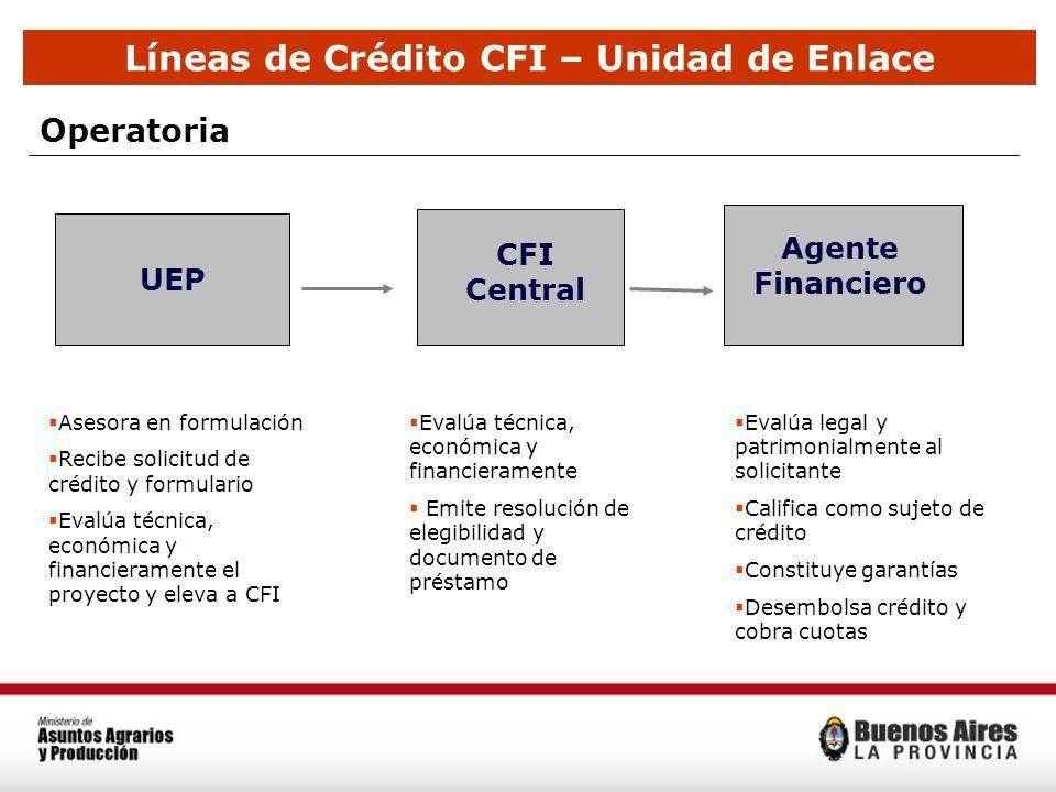 Líneas de Crédito CFI – Unidad de Enlace Operatoria UEP CFI Central Agente Financiero Asesora en formulación Recibe solicitud de crédito y formulario