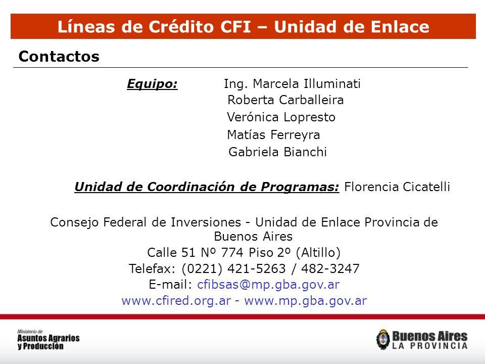 Líneas de Crédito CFI – Unidad de Enlace Equipo:Ing. Marcela Illuminati Roberta Carballeira Verónica Lopresto Matías Ferreyra Gabriela Bianchi Unidad