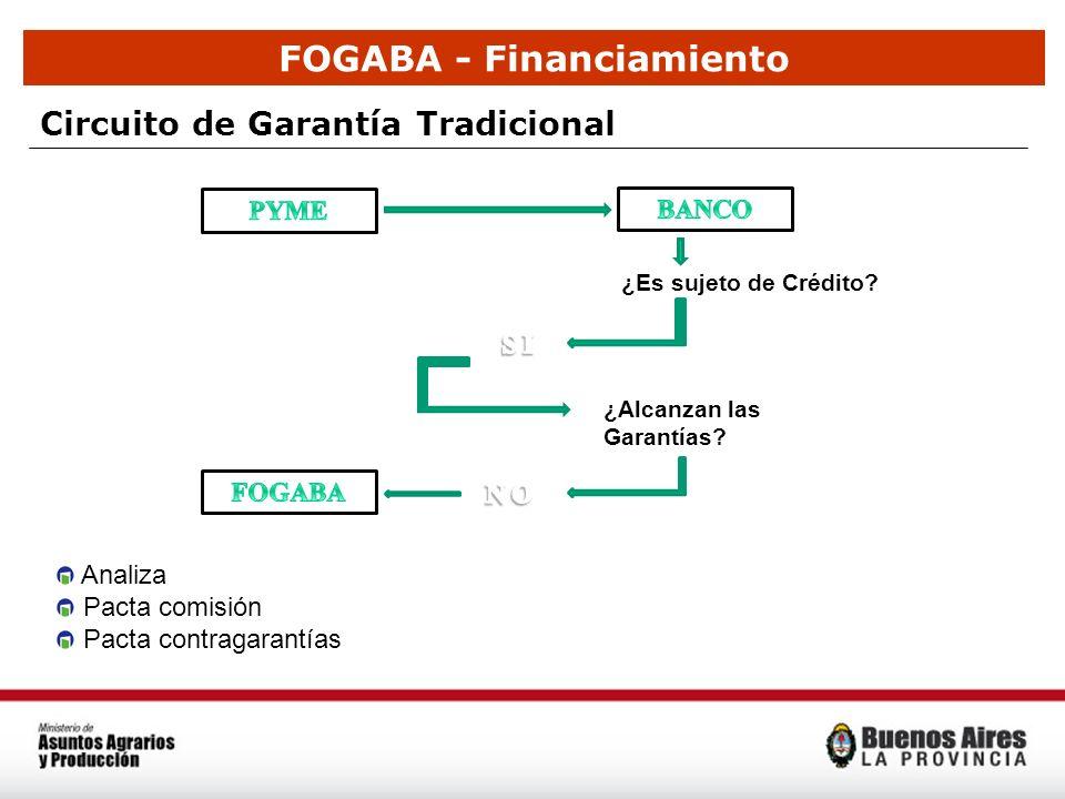 FOGABA - Financiamiento Circuito de Garantía Tradicional ¿Alcanzan las Garantías? ¿Es sujeto de Crédito? Analiza Pacta comisión Pacta contragarantías