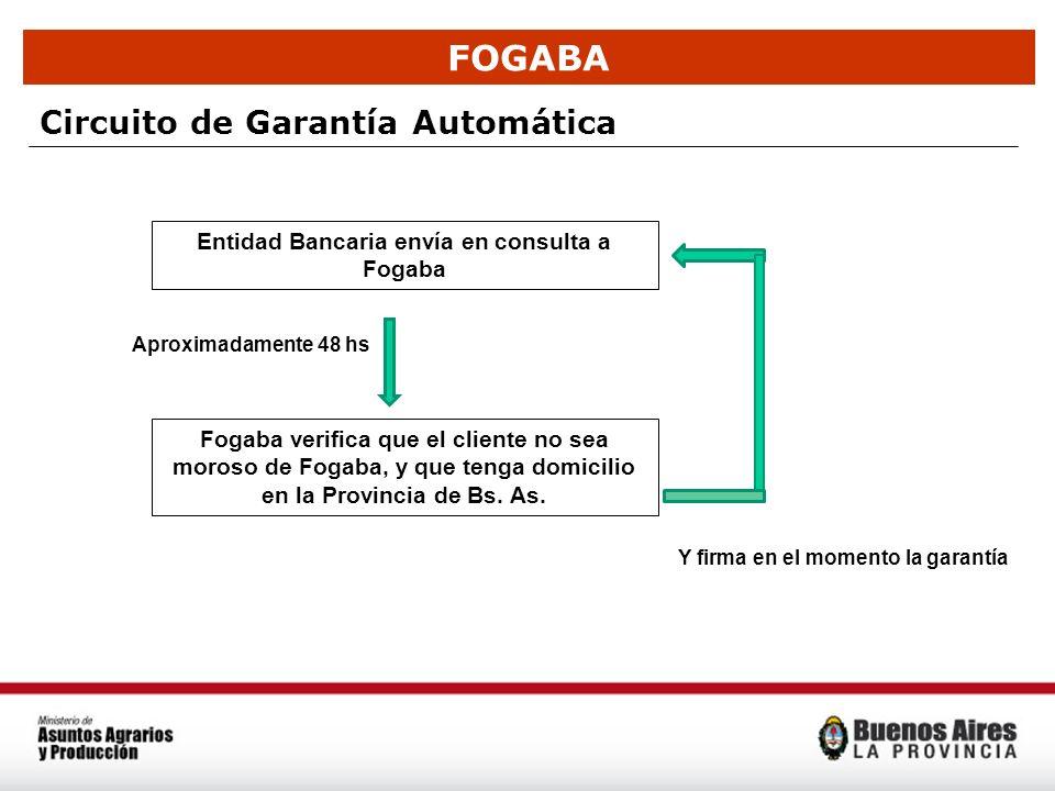 FOGABA Circuito de Garantía Automática Entidad Bancaria envía en consulta a Fogaba Fogaba verifica que el cliente no sea moroso de Fogaba, y que tenga