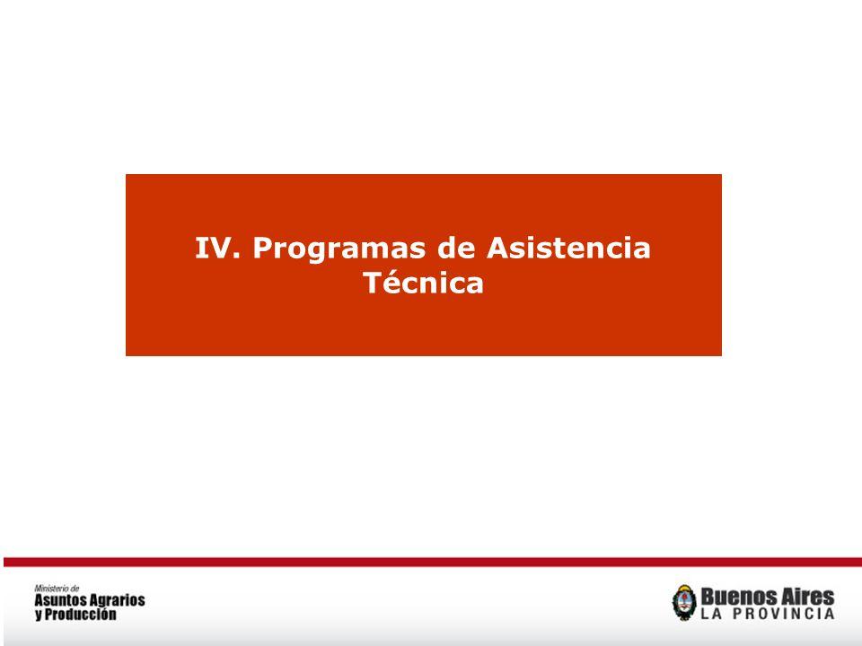 IV. Programas de Asistencia Técnica
