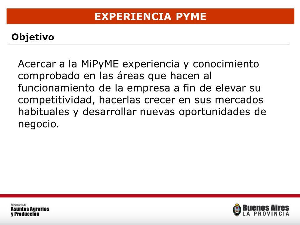 EXPERIENCIA PYME Objetivo Acercar a la MiPyME experiencia y conocimiento comprobado en las áreas que hacen al funcionamiento de la empresa a fin de el
