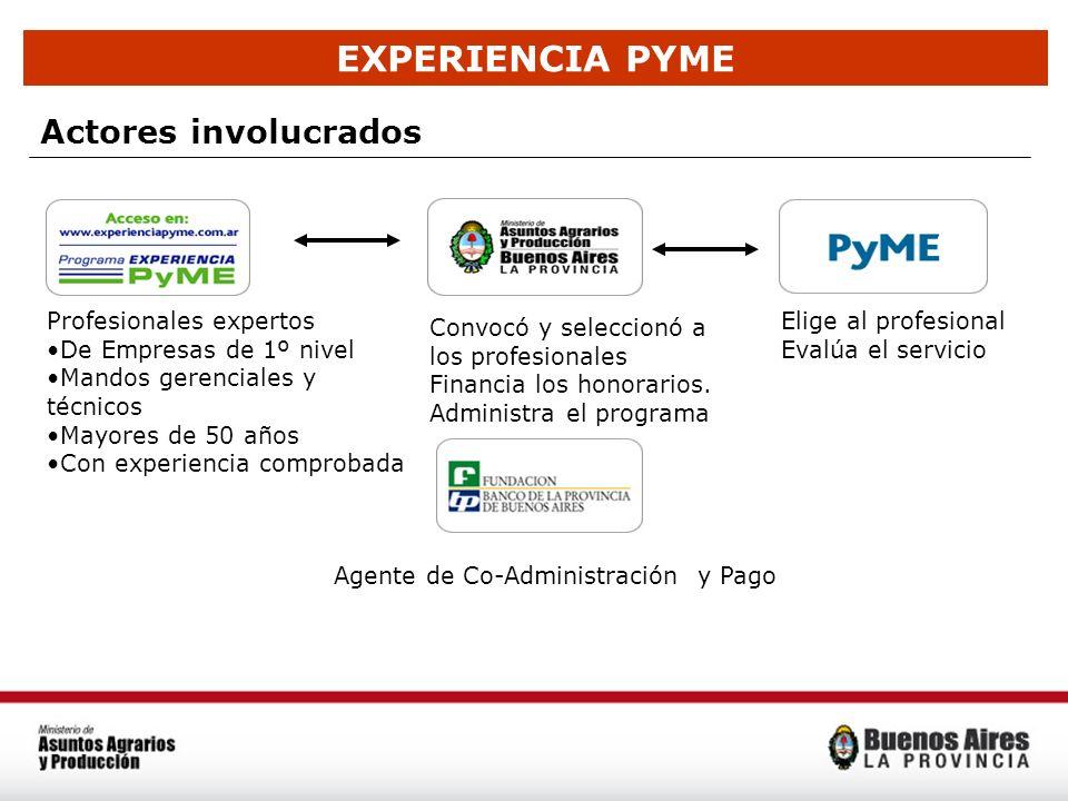 EXPERIENCIA PYME Actores involucrados Profesionales expertos De Empresas de 1º nivel Mandos gerenciales y técnicos Mayores de 50 años Con experiencia