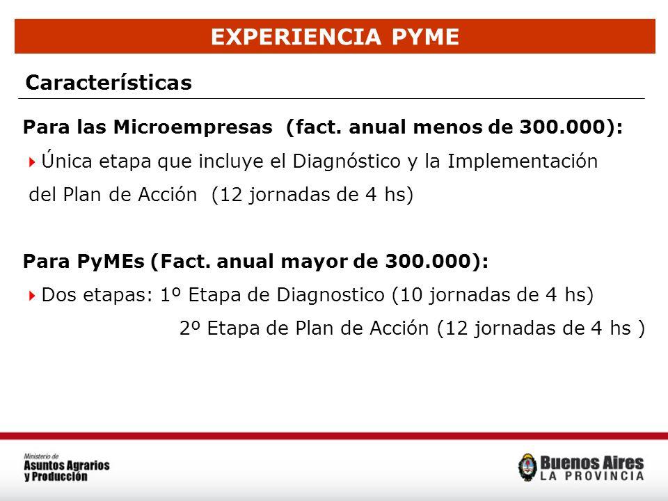 EXPERIENCIA PYME Características Para las Microempresas (fact. anual menos de 300.000): Única etapa que incluye el Diagnóstico y la Implementación del