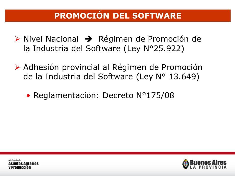 PROMOCIÓN DEL SOFTWARE Nivel Nacional Régimen de Promoción de la Industria del Software (Ley N°25.922) Adhesión provincial al Régimen de Promoción de