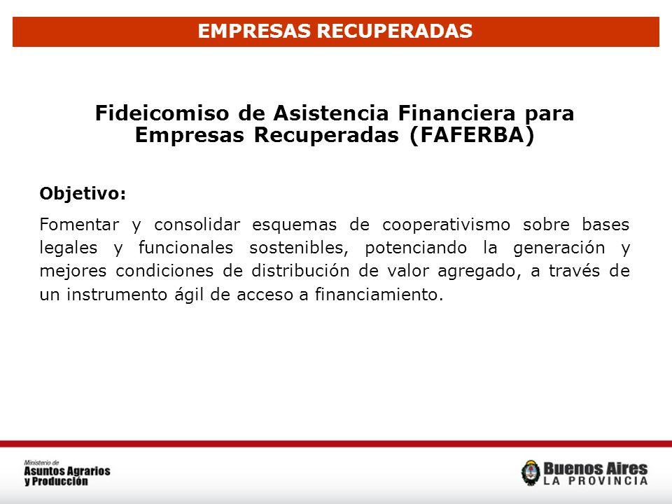 Fideicomiso de Asistencia Financiera para Empresas Recuperadas (FAFERBA) Objetivo: Fomentar y consolidar esquemas de cooperativismo sobre bases legale