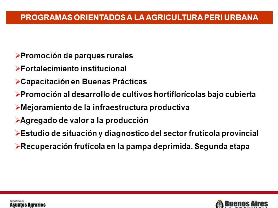 PROGRAMAS ORIENTADOS A LA AGRICULTURA PERI URBANA Promoción de parques rurales Fortalecimiento institucional Capacitación en Buenas Prácticas Promoció