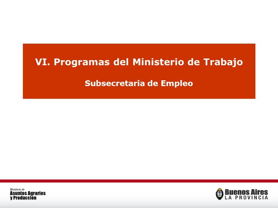 VI. Programas del Ministerio de Trabajo Subsecretaria de Empleo