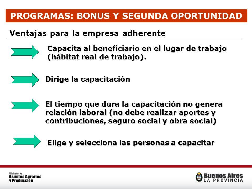 PROGRAMAS: BONUS Y SEGUNDA OPORTUNIDAD Ventajas para la empresa adherente Capacita al beneficiario en el lugar de trabajo (hábitat real de trabajo). C