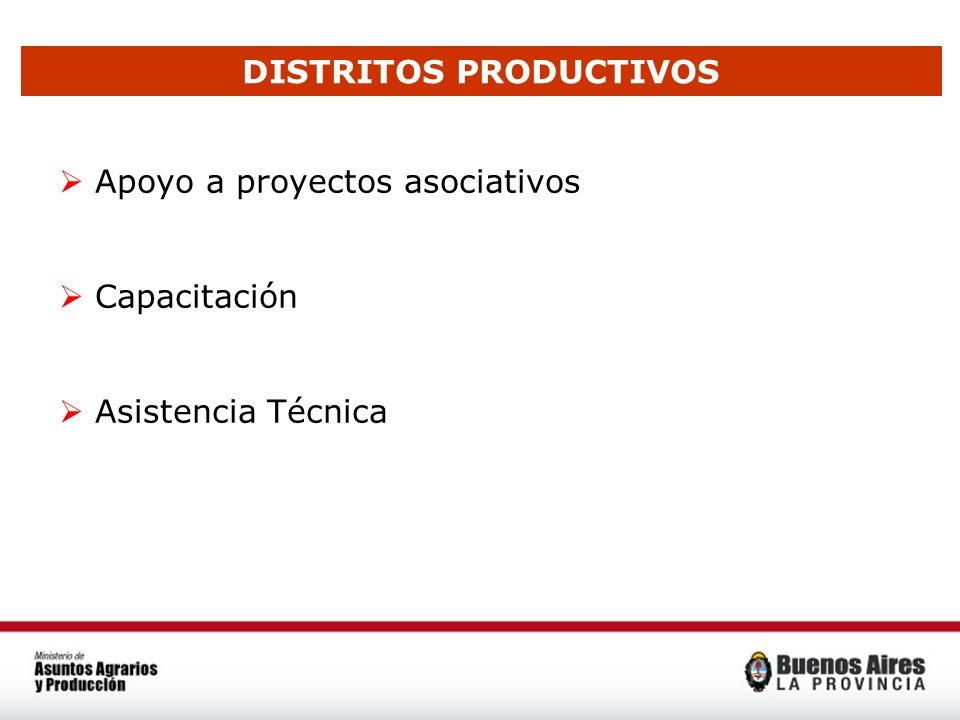 DISTRITOS PRODUCTIVOS Apoyo a proyectos asociativos Capacitación Asistencia Técnica