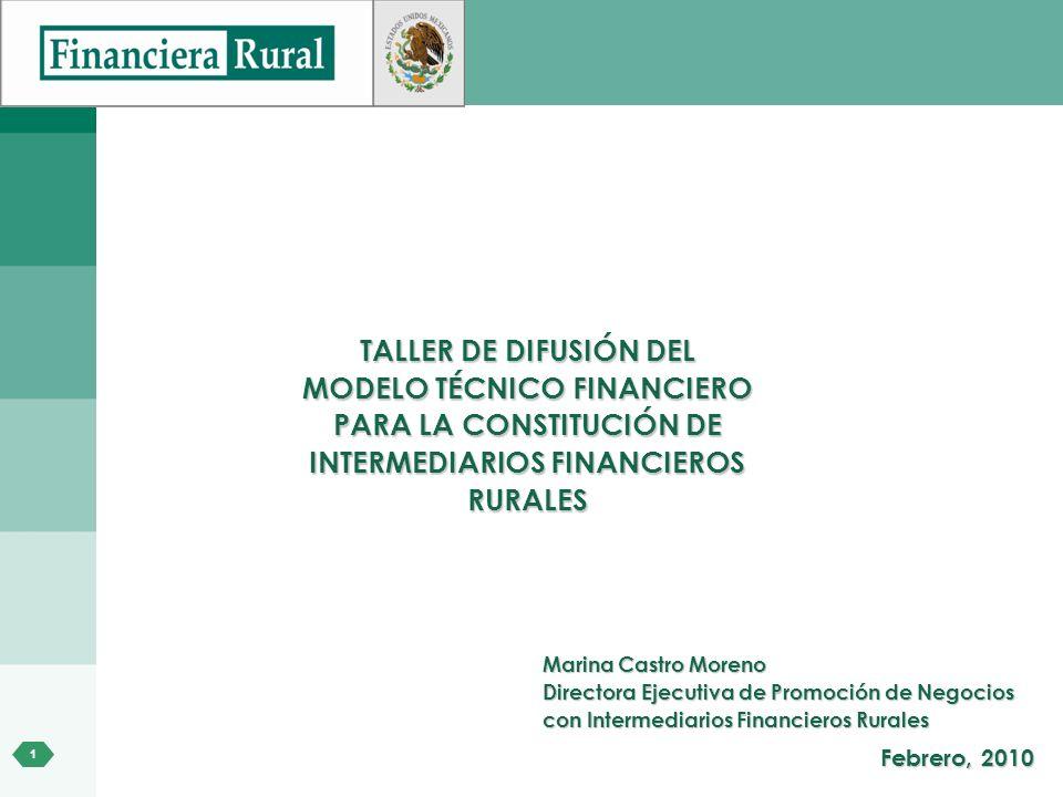 1 TALLER DE DIFUSIÓN DEL MODELO TÉCNICO FINANCIERO PARA LA CONSTITUCIÓN DE INTERMEDIARIOS FINANCIEROS RURALES Marina Castro Moreno Directora Ejecutiva