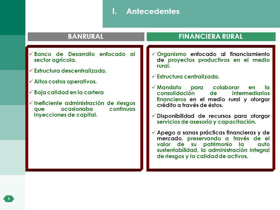 4 I. Antecedentes BANRURALFINANCIERA RURAL Organismo enfocado al financiamiento de proyectos productivos en el medio rural. Estructura centralizada. M