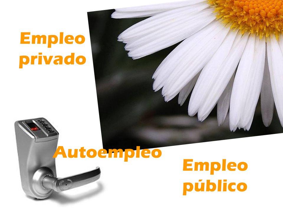 Empleo privado Empleo público Autoempleo