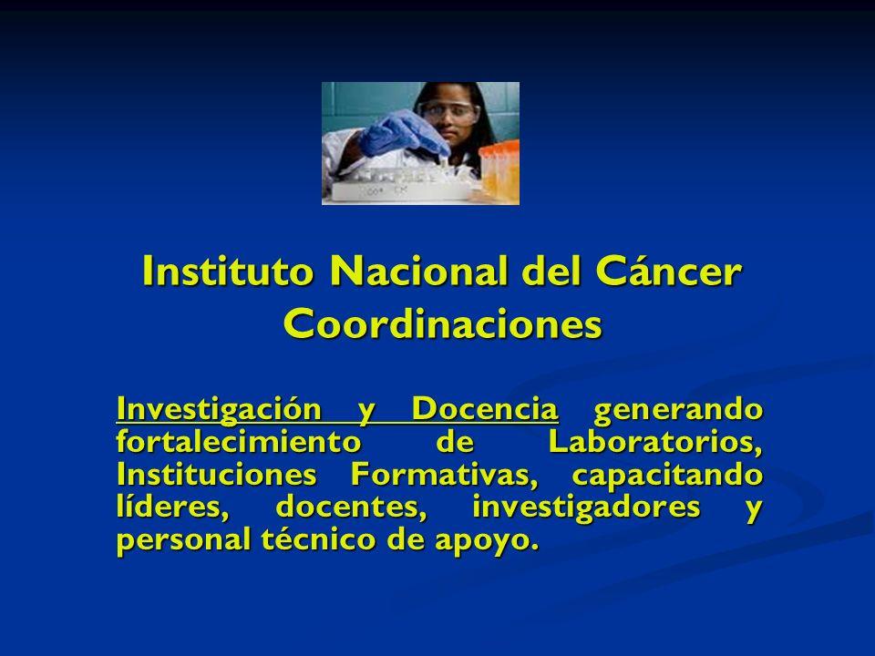 Instituto Nacional del Cáncer Coordinaciones Investigación y Docencia generando fortalecimiento de Laboratorios, Instituciones Formativas, capacitando líderes, docentes, investigadores y personal técnico de apoyo.