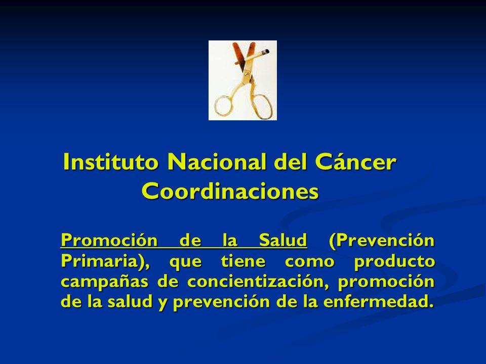 Instituto Nacional del Cáncer Coordinaciones Promoción de la Salud (Prevención Primaria), que tiene como producto campañas de concientización, promoción de la salud y prevención de la enfermedad.