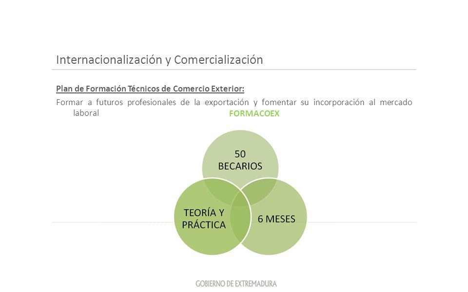 Internacionalización y Comercialización Plan de Formación Técnicos de Comercio Exterior: Formar a futuros profesionales de la exportación y fomentar s