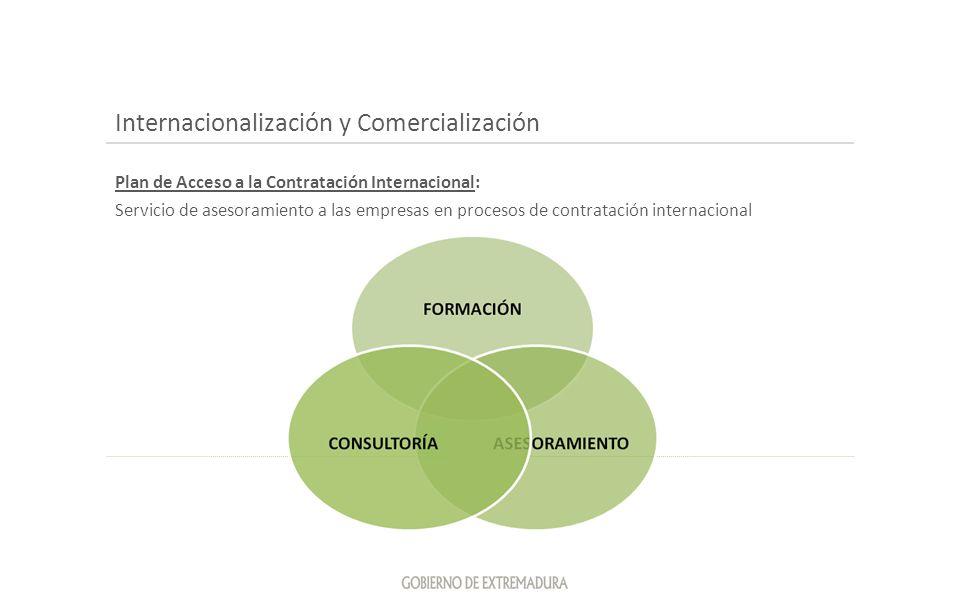 Internacionalización y Comercialización Plan de Acceso a la Contratación Internacional: Servicio de asesoramiento a las empresas en procesos de contra