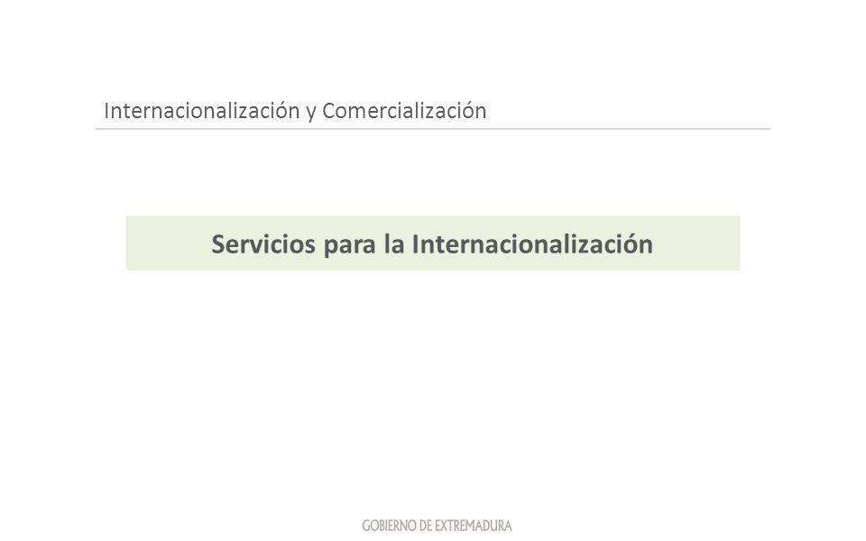Internacionalización y Comercialización Servicios para la Internacionalización