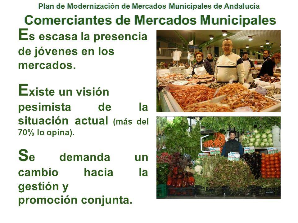 Plan de Modernización de Mercados Municipales de Andalucía Comerciantes de Mercados Municipales E s escasa la presencia de jóvenes en los mercados. E